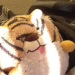 stuffedcat_small